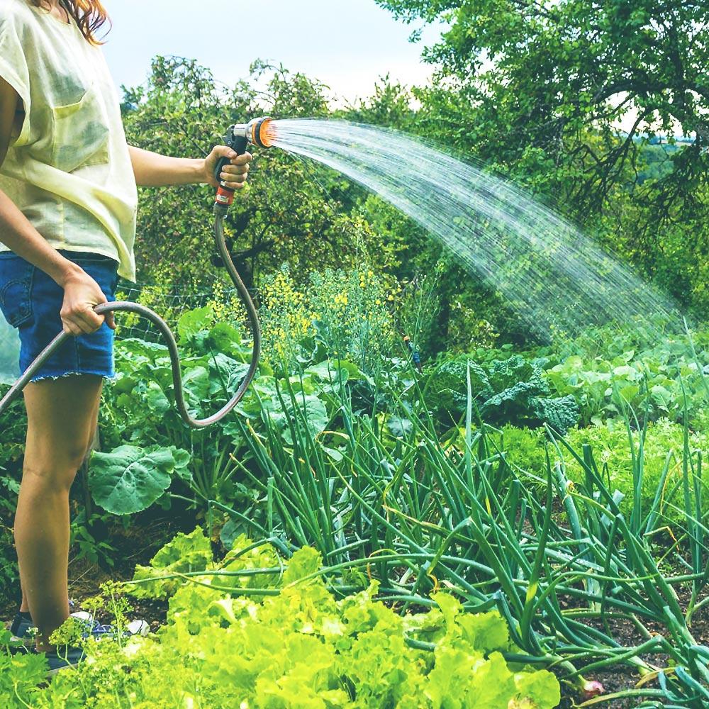Watering Garden | Save Tarrant Water